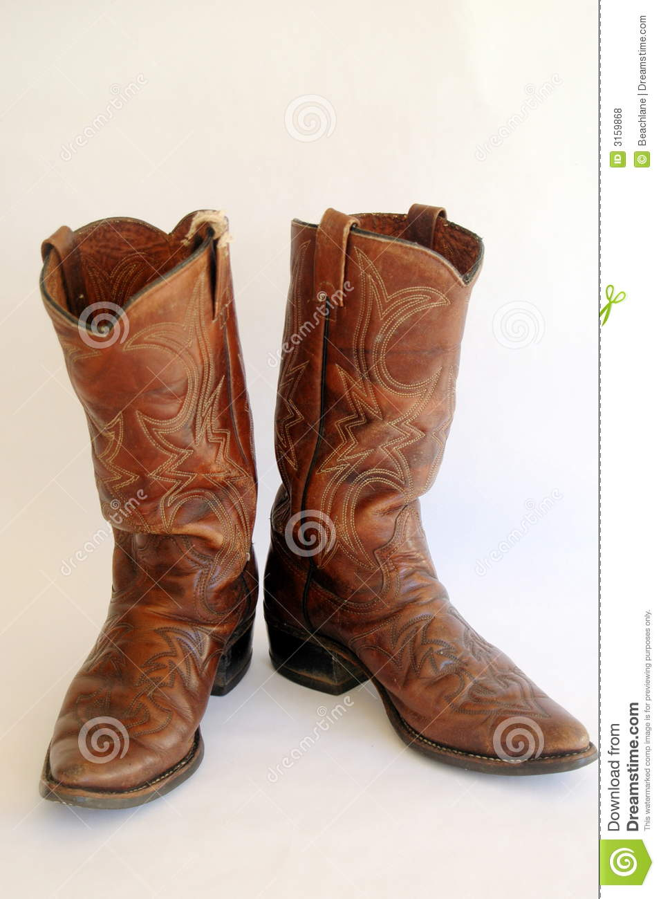 Leather Cowgirl Boots NAC007J3